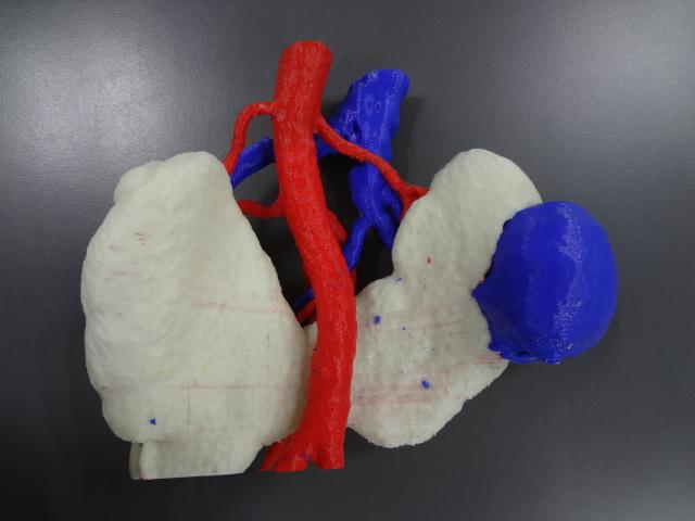 Modelo impreso en 3D