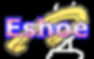 eshoe5-300x225.png