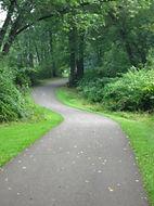 Queen City Trail.jpg