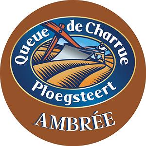 QUEUE DE CHARRUE AMBREE.png