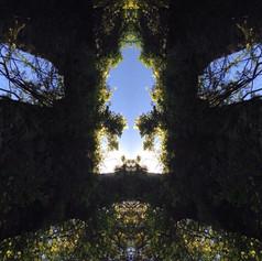 Trinity Gate