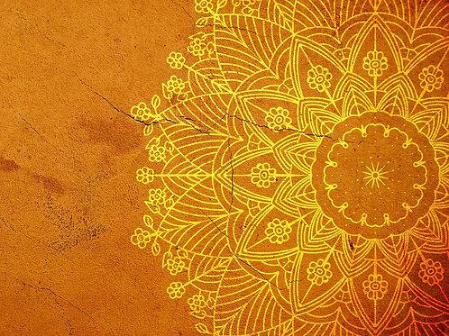 Phoenix Rising Yoga: Meditation in Motion Certificate Program