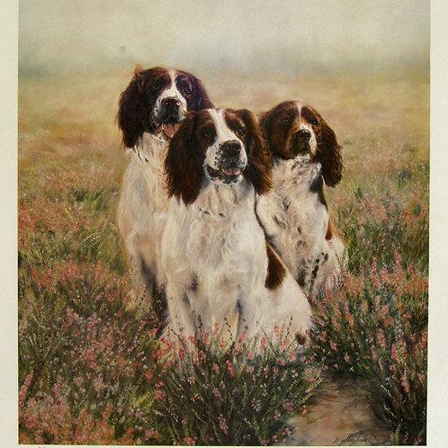 """Trio"" by Debbie Gillingham"