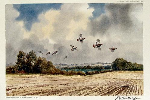 """""""September Partridge"""" by R.W. Milliken"""