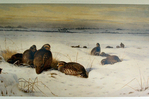 """In the Bleak Midwinter"" by Archibald Thorburn"