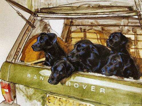 """Labradors"" by Henry Koehler"