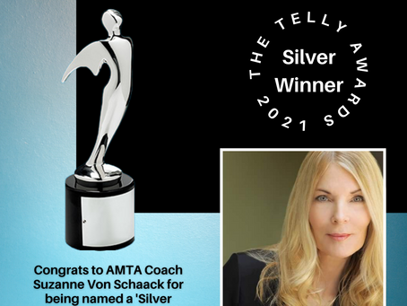 """Telly Award for """"The Chains that Bind"""""""