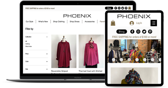 Retail Ecommerce Website Design Service
