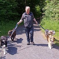 Armin Bösch – Hundeoase Felsbach