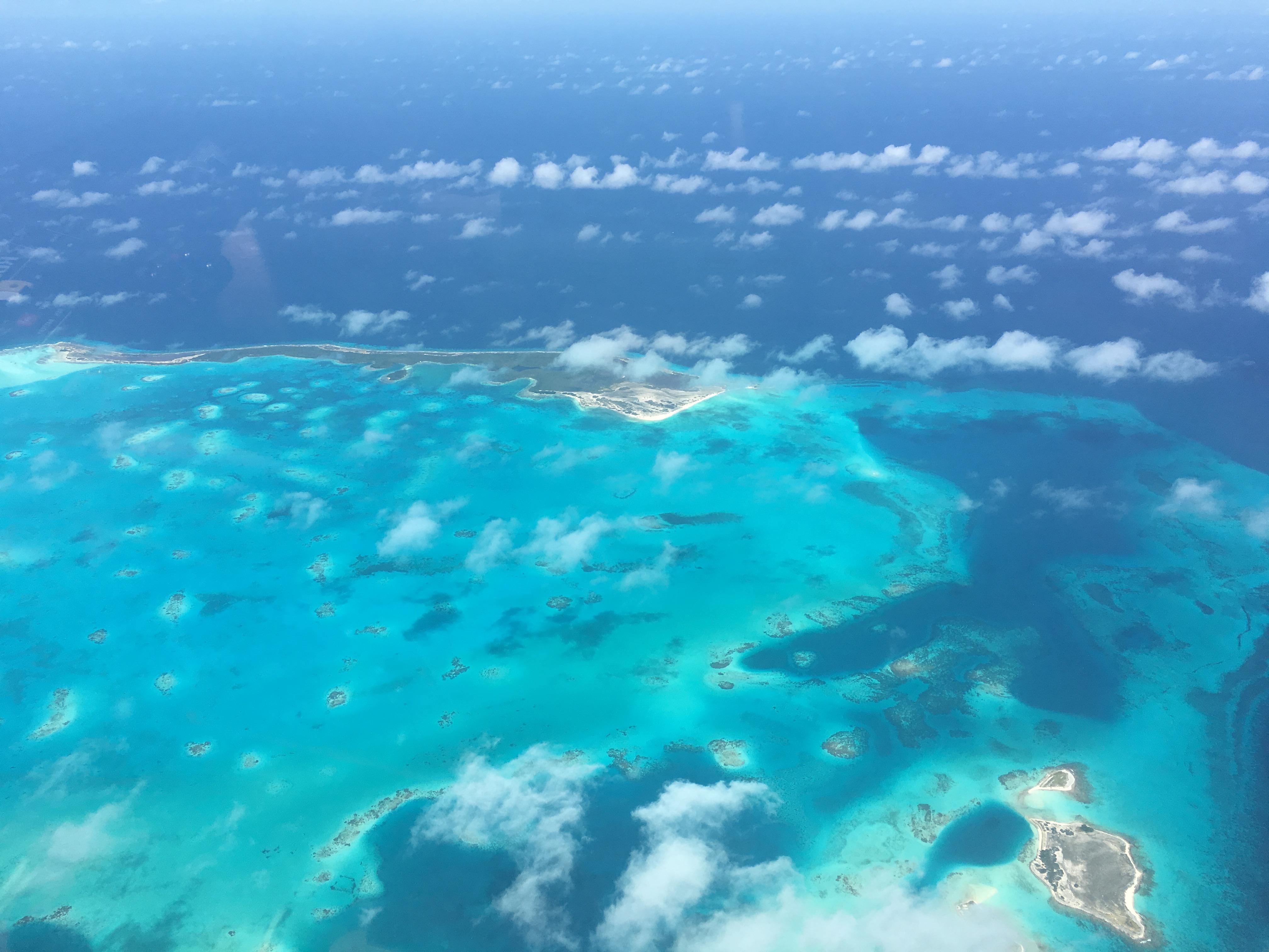 063 IMG_2808 Islas Las Aves - Carribean Sea