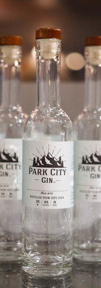 Alpine Park City Gin
