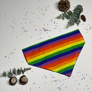 Rainbow - Front