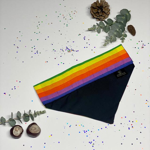 Rainbow - Back