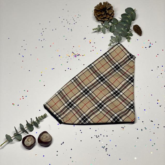 Beige Tartan - Burberry Style - Front