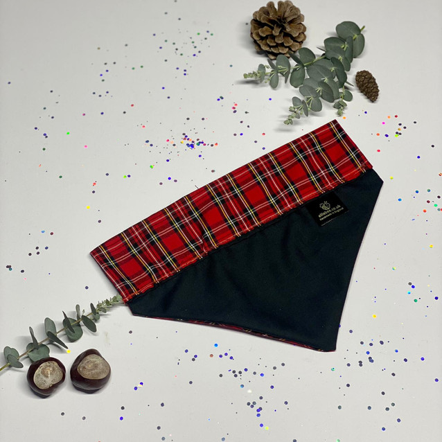 Royal Stewart Tartan - Back