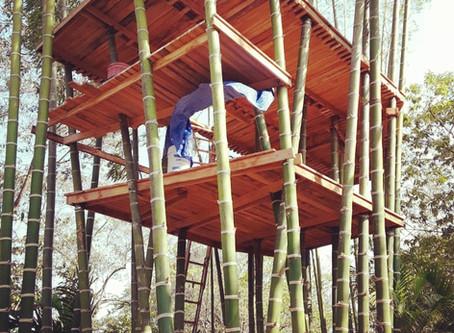 Bamboo Tree House. Living Platform