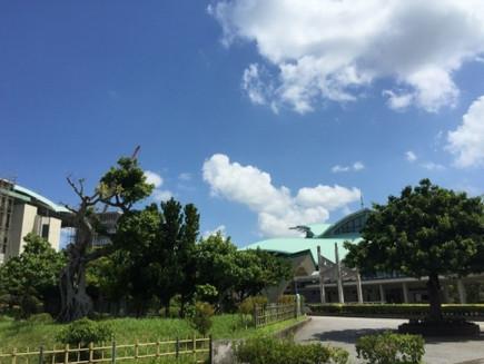 沖縄県にて採用活動を実施