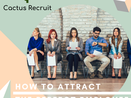 HOW TO ATTRACT THE PERFECT EMPLOYEE