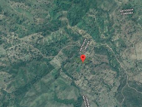 Comunidad denuncia presencia de tres leones en zona rural de Montería