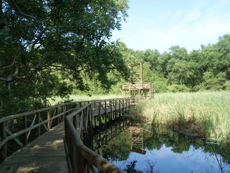 Campesinos se dedicarán al ecoturismo en el Vía Parque Isla Salamanca
