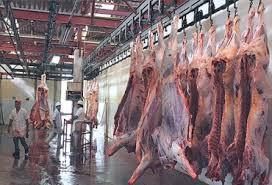 Incrementa sacrificio bovino en Córdoba