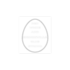 Copy of Egg 2020 coloring page.png