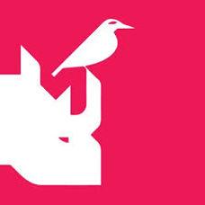 Rhinobird.tv .jpeg