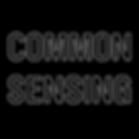 common sensing.png