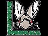 hareline dubbin logo.png