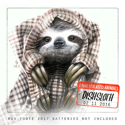 Dishsloth