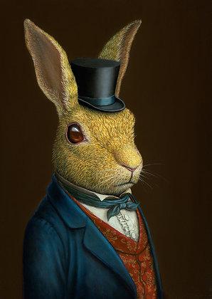 Mr Rabbit