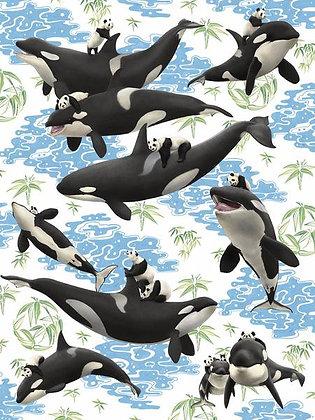 Captives: Orcas 'n Pandas