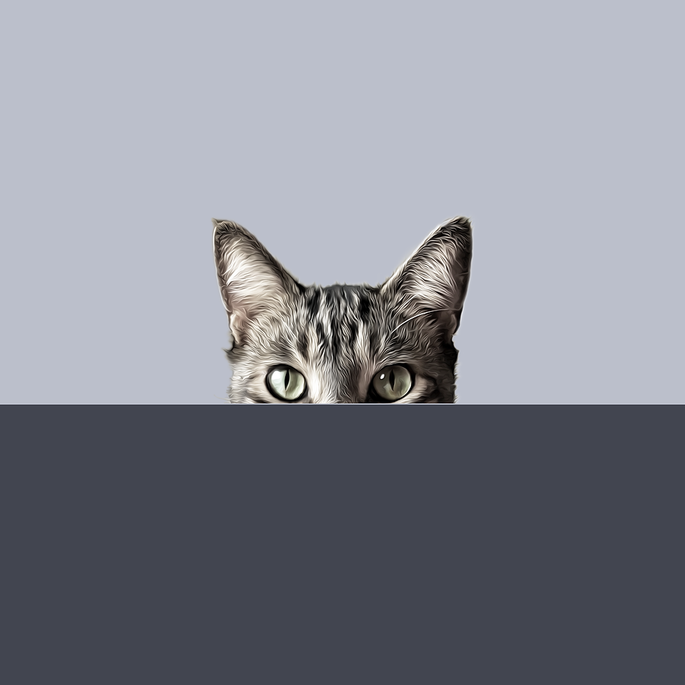 pinot-noir-cubbie-blank.png