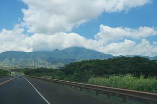 ตามหาเต่าทะเล ณ North Shore เกาะ Oahu, Hawaii