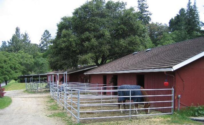 Horse boarding near Santa Cruz