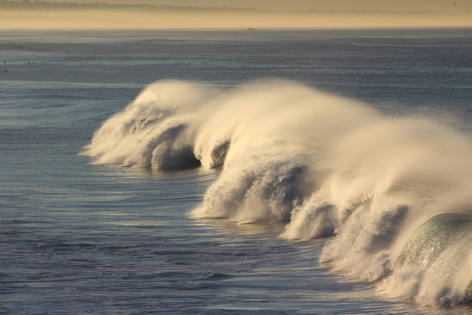 Wave #14