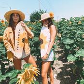 MAI DAN בשדה חמניות צהוב