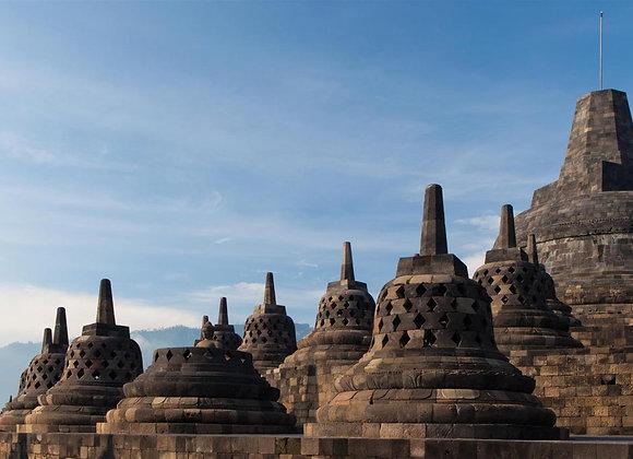 4D3N ROYAL CITY OF YOGYAKARTA