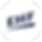 euro_logo.png