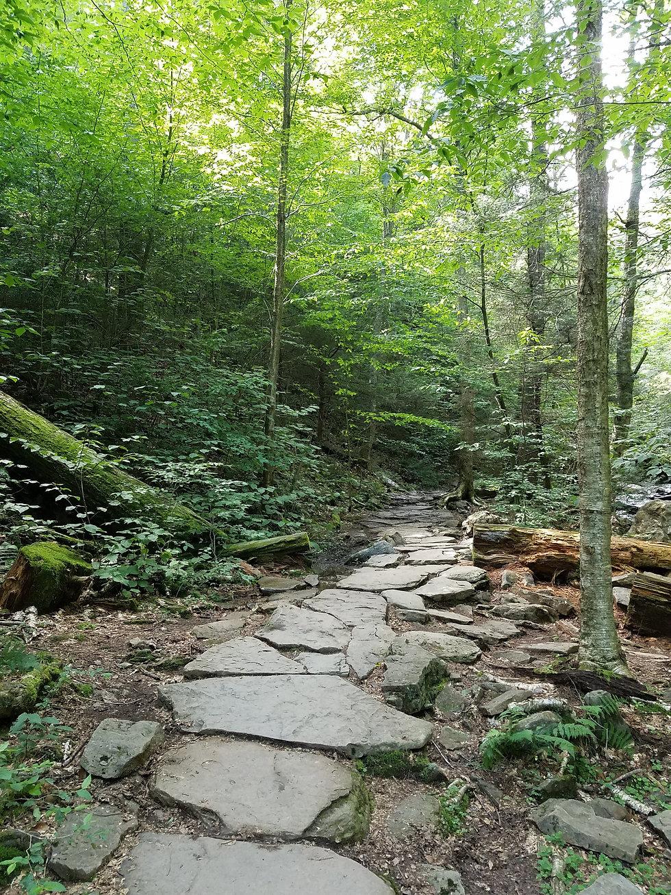 Stone path Ricketts Glen State Park, PA