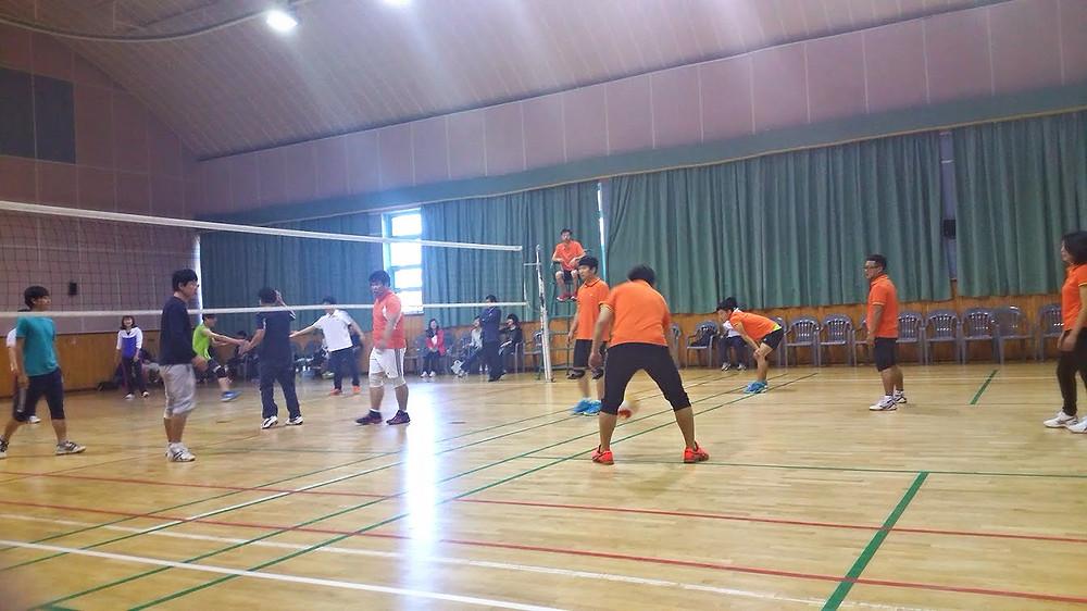 Teachers Volleyball Teaching English in South Korea