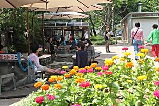 Yuseong Hot Springs and Foot Spa