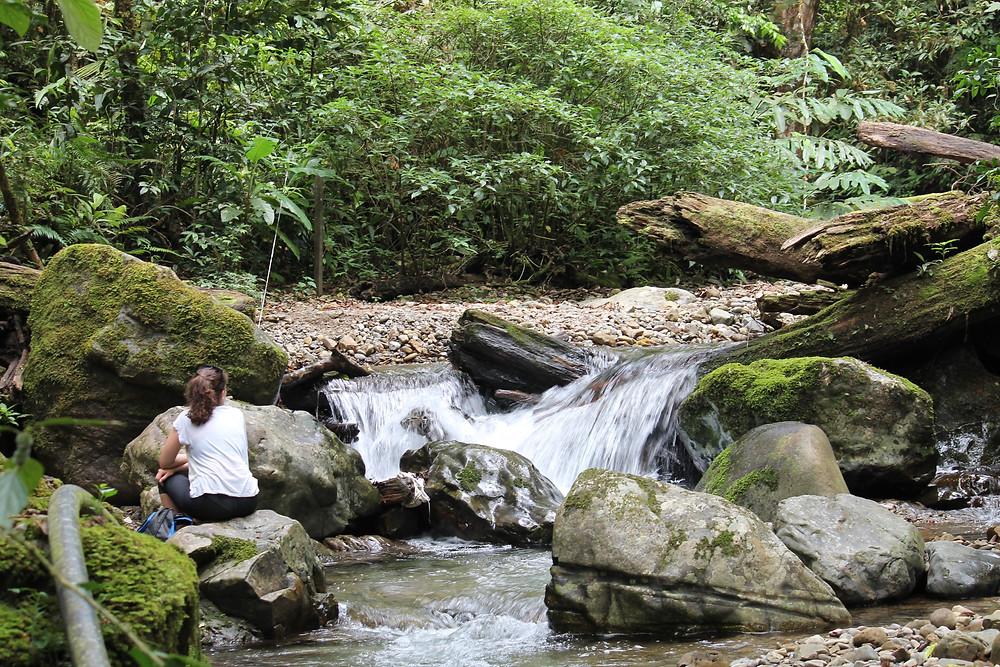 Beautiful Borneo: What to do in Sabah, Malaysia Kinabalu national park four dirty feet