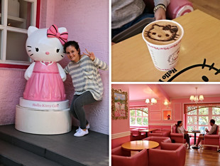 Themed Café's in Hongdae, Seoul