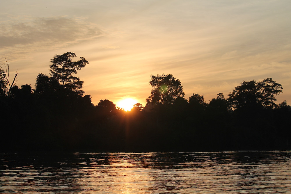 Beautiful Borneo: What to do in Sabah, Malaysia Kinabatang river four dirty feet