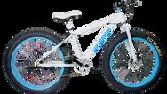 Bicicleta para arena