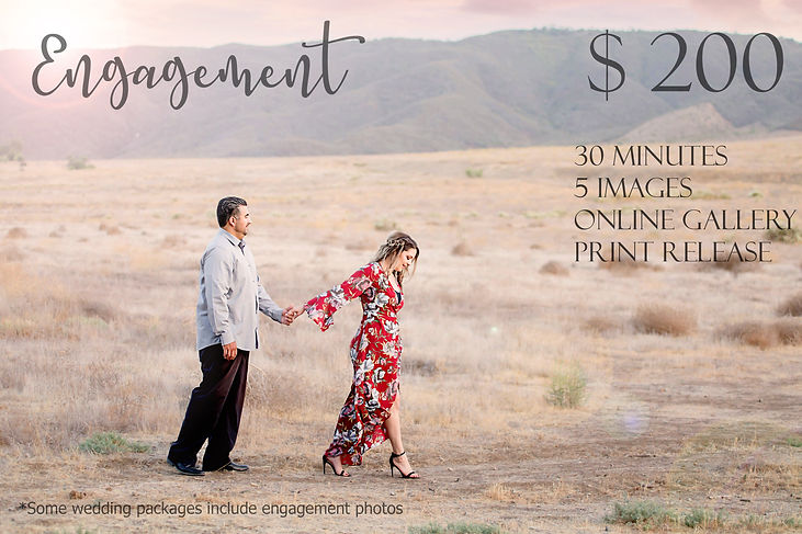 engagement pricing.jpg