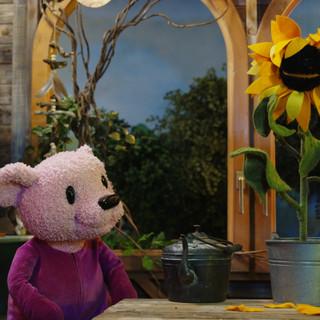 Bärenherz-Bär mit seiner Sonneblume