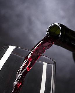 Formation service du vin au restaurant