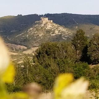 Sarrat d'En Sol Gîte Tuchan Hérault Fito
